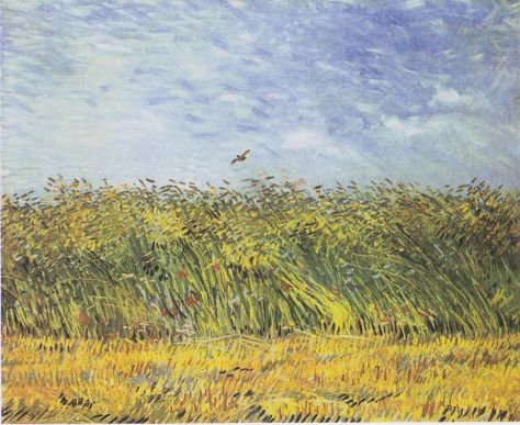 """Wheat field with poppies and lark""- Summer 1887"