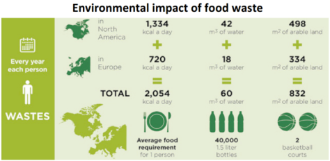 "Click to enlarge. (Source: BCFN, ""Defeating the paradox of food waste"", 2013)"